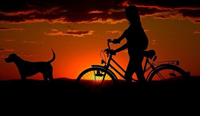 cyklistka se psem