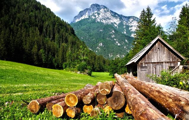 kulatina, chatka, horský palouk