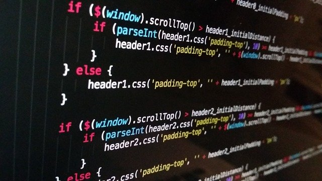 programování internetové stránky